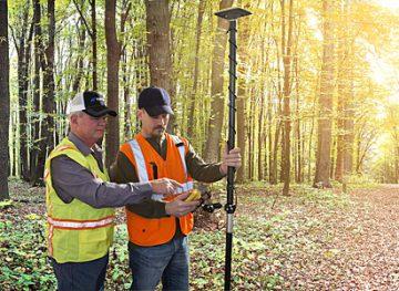 Angajaţii din silvicultură vor primi un salariu tarifar de 2100 de lei