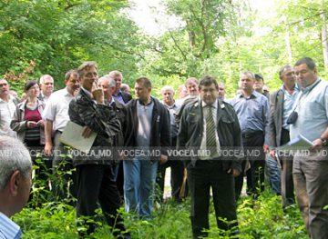"""După intervenţia Federaţiei """"Sindsilva"""", s-a făcut ordine la întreprinderile silvice din țară"""