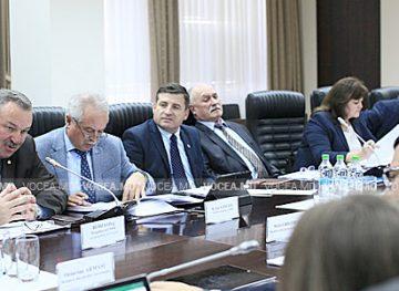 Comitetele sectoriale vor avea statut juridic şi ar putea deveni mai funcţionale