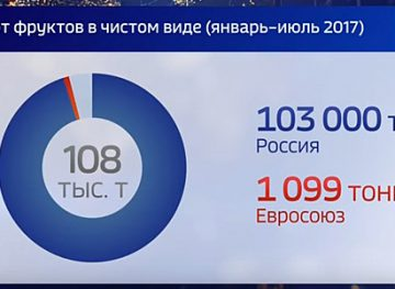 """Ştire """"Россия 1"""" despre fructele și legume exportate în UE și Rusia: jumătăți de adevăr și trunchierea declarațiilor"""