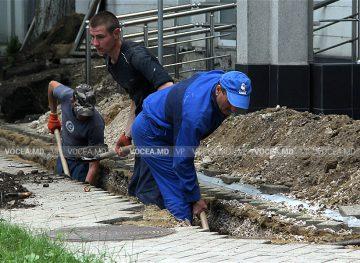 Care sunt sectoarele unde activează cei mai mulți moldoveni