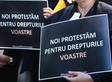 Протест в мантиях у Апелляционной палаты