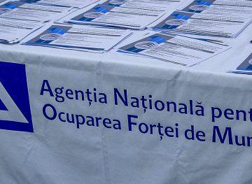 Concept de reorganizare a Agenției Naționale pentru Ocuparea Forței de Muncă
