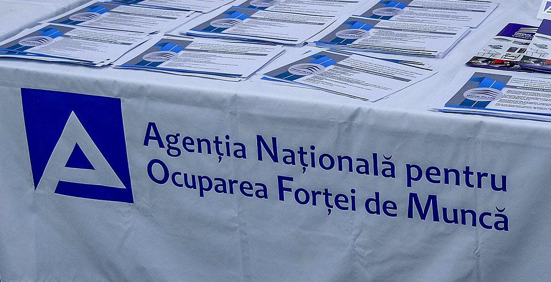 Концепция реорганизации Национального агентства занятости населения