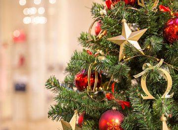 Tradiția și semnificația bradului de Crăciun