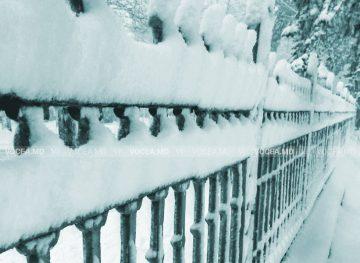 Solitar treceam prin parcul trist … Ninge în Chișinău. Fotografie