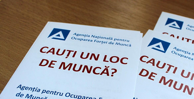 НАЗН в контексте перемен: социальная защита, занятость и миграция рабочей силы