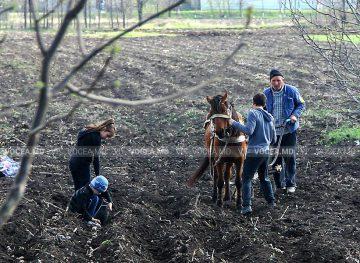 Exploatarea copiilor prin muncă, greu de monitorizat