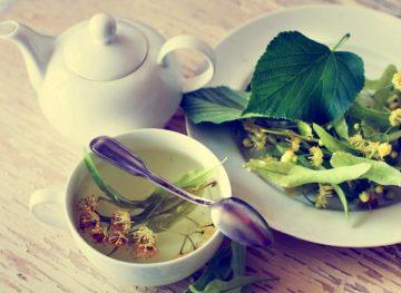 Дары природы. Чай из липы и его польза для здоровья