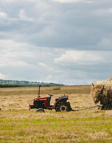 Gospodăria de fermier și contractul de muncă. Deplasarea în interes de serviciu
