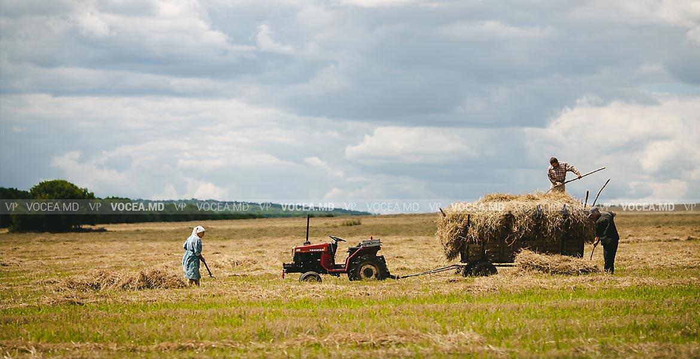 Фермерское хозяйство и трудовой договор. Служебная командировка