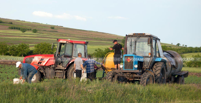 Субсидированное страхование в сельском хозяйстве в связи с засухой