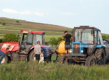 Asigurarea subvenționată în agricultură, pe fondul secetei