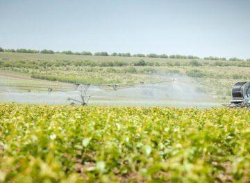 Proiect de program pentru creșterea suprafețelor de terenuri agricole irigate