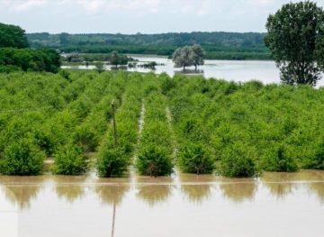 Беда не приходит одна: ливневые дожди после засухи во многих районах страны