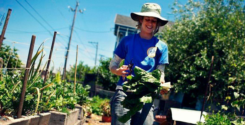 Авансовые субсидии молодым людям на развитие своего дела в области сельского хозяйства