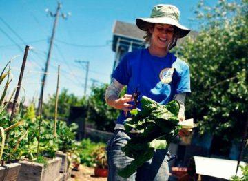 Subvenții în avans pentru tinerii care doresc să se lanseze în afaceri agricole